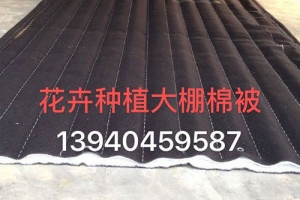 齐齐哈尔花卉种植大棚棉被